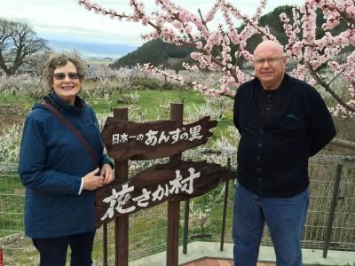 Mori Anzu Village, 2015.4.06